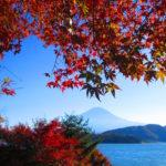 よくばり富士五湖観光チケット